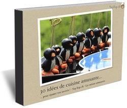 ebook pdf gratuit 30 idées de recettes de cuisine amusante pour épater vos invités