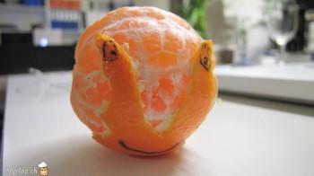 escargot mandarine antennes