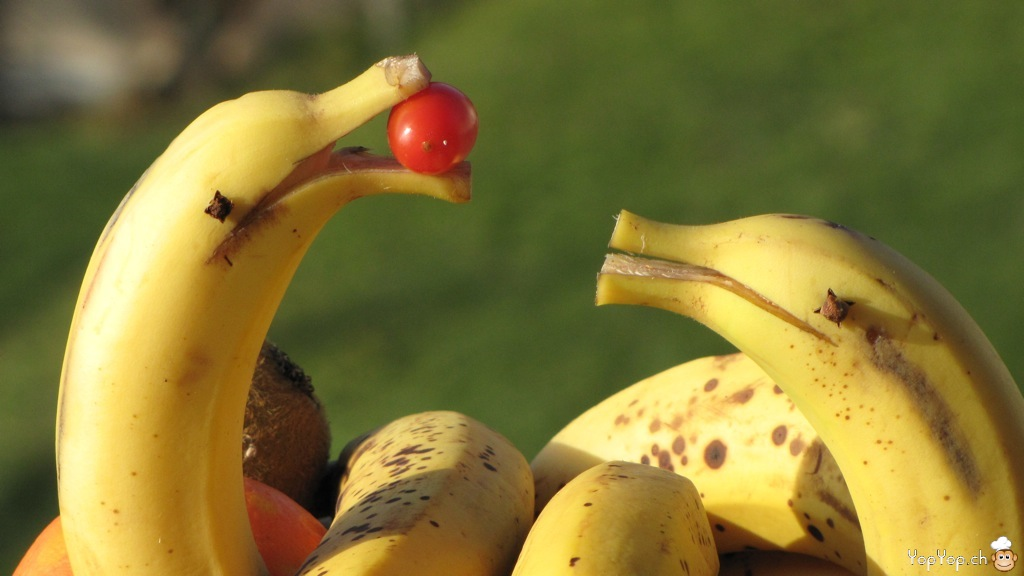 les dauphins joueurs en banane... des bananes dauphins
