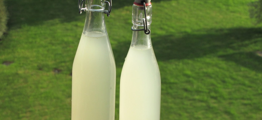 comment faire de la limonade maison soi-même