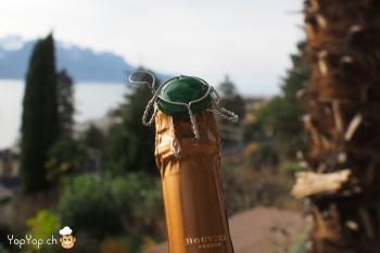 12-tortue en fil de fer de bouchon de champagne