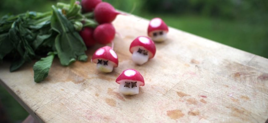 recette de geek - radis champignon nintendo Toad
