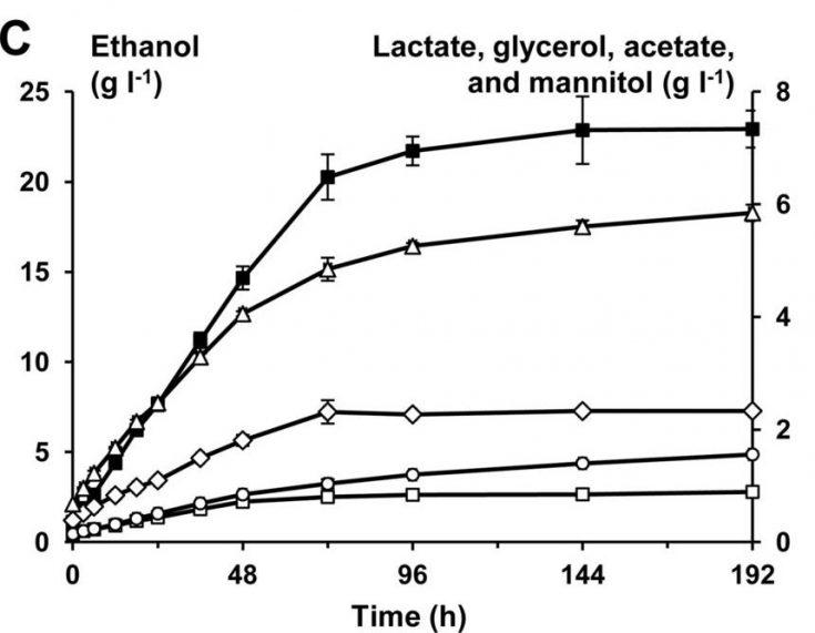 graphe evolution alcool ethanol dans le kefir de fruit eau